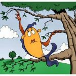 Fish Don't Climb Trees